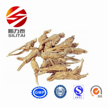 100% Natural Crude Medicine Angelica Sinensis/Chinese Angelica