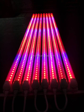 fruit and vegetable cultivation 18w 1.2m t8 pink led tube light with series PLUG