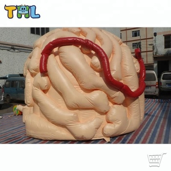 Inflatable Customized 3D Brain Teaching Model for Medical Exhibition