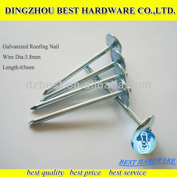 Galvanized umbrella head roofing Nails made in China