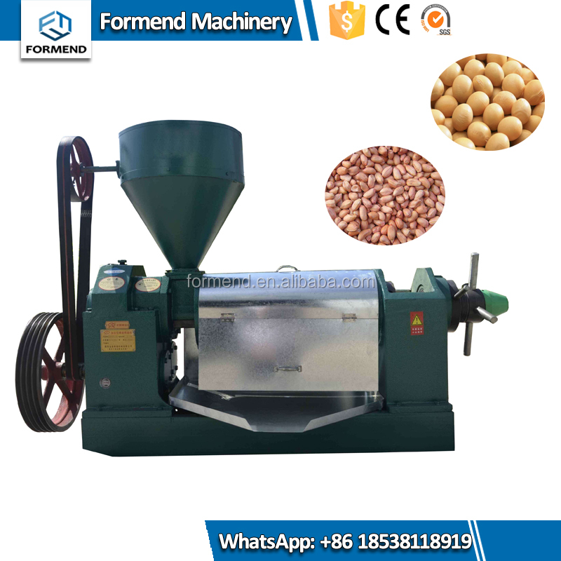 OEM Manufacture small model palm fruit cold screw oil press