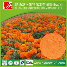 Manufacturer Supply Lutein Softgel/Capsule