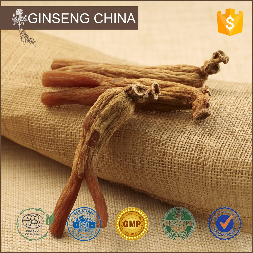 Root Price Panax Extract 80%Ginsenoside Korean Ginseng Tea Gold