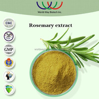 rosemary extract,free sample nature preservative for fish meat 30% rosmarinic acid rosemary powder extract