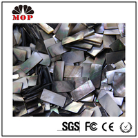 mother of pearl black lip shell tile mosaic