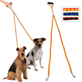 Amazon Top Selling Nylon Double Coupler Dog Leash