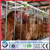 alibaba express galvanized water trough poultry farm cage