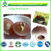 ISO& GMP Factory Supply Organic Grape Seed Extract Proanthocyanidins
