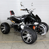 Petrol Powerful 250CC Quad Bike Racing ATV with Backrest
