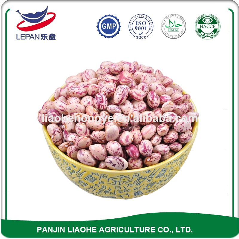 Best Sale HPS Grade A Newest Crop All Types of Round Rajma Chitra Kidney New Pinto Beans