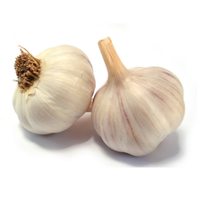 Professional supplier of agricultural product natural garlic with high quality