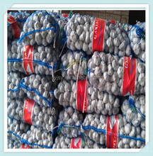 wholesale garlic price market with good quality in China