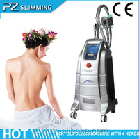 beauty equipment from China for small business / high quality cryolipolyses fat freezing machine