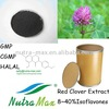 Red Clover seed (best quality)