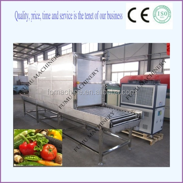 250 kg small model vacuum vegetable cooler to keep fresh