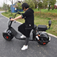 2017 Year Hot sale New Model 800W Motor Fat Tire Mobility Big