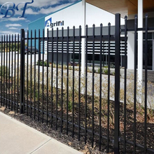 New design Black powder coated security backyard metal steel picket fence supplier