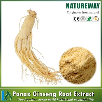 Top quality Panax Ginseng Extract