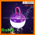 Floating Waterproof Camping Lantern with LED Technology & USB Charging