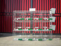 wire cage frames 32 pigeon house high quality pigeon coops HJ-PC32