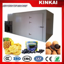 Industrial dried pineapple fruit drying machine 300-600kg natural dry 100%