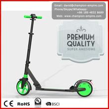 Carbon Fier Foldable 2 2017 3 Fat Tire City Coco Motor 800W Citycoco One Wheel Electric Scooter