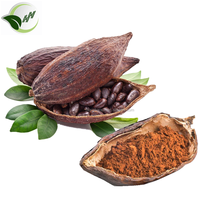 Top selling for slim coca seeds/cocoa powder/raw cocoa powder