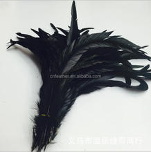 Long Black Cock Feather