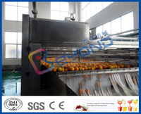 orange brusher fruit cleaning machine