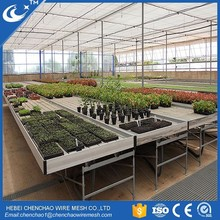 Growing Tables for Commercial seeding bed greenhouse rolling bench