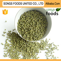 Fresh Green Mung Beans Competitive Price
