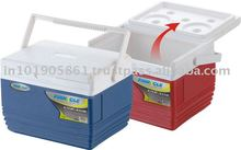 Thermo Cooler Box/mini cooler box