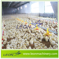 LEON poultry controlled shed equipment for chicken feeding and drinking
