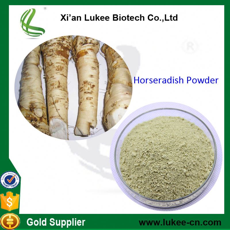 Hot sale Plant extract Wasabi horseradish root Powder extract/Mustard extract/Horseradish Powder