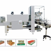 High Quality Automatic Shrink Wrapping Machine