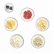 High quality bulk vacuum packed fruit chips freeze dried food