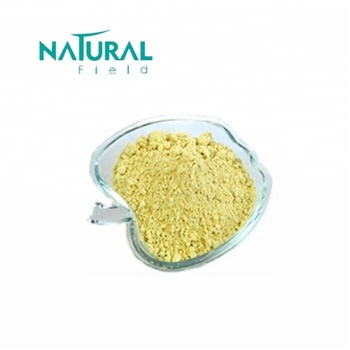 Kosher Certificate Rutin 95% from Sophora Japonica Flower Extract