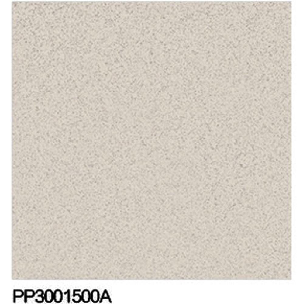 300 300 granito sale pepe piastrelle del pavimento - Piastrelle 10x10 sale e pepe ...