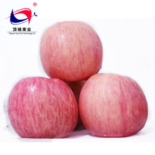 2017 High quality Luochuan Fuji apples best apples for baking pies