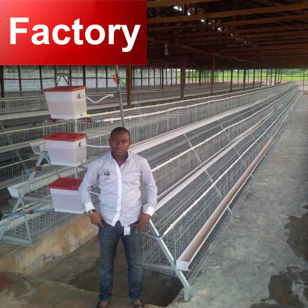 Big sliding door and easy to open chicken poultry layer cage