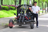 Yerf dog Swing Tuta Kart EG3001 on Sale