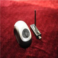 Wireless portable magnifier with mouse shape for computer