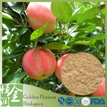 Top Seller GMP Factory Green Apple Extract PE