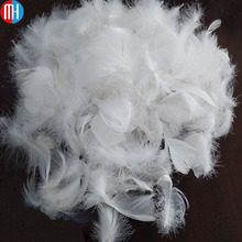 Bulk sale washed 2-4CM white duck feather for fill sofa