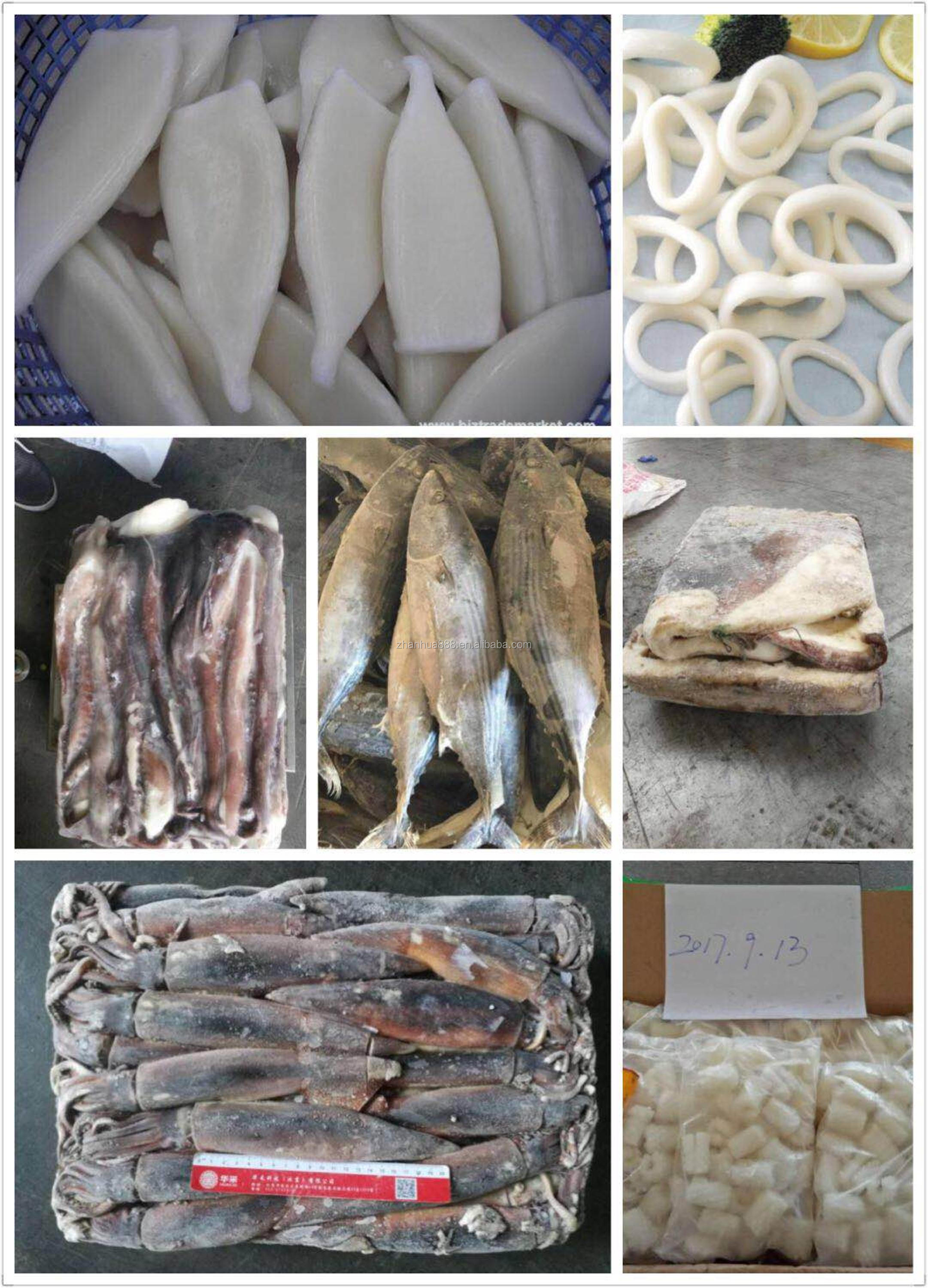 Seafood Illex Squid Argentinus Squid Whole Round Jigger Caught