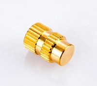M5 slotted rivet brass screw nut