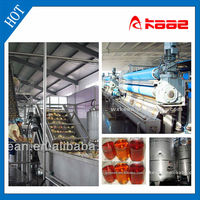 Industrial Apple And Pear Juice Processing
