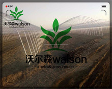 Wide Range Multi Span Commercial Agriculture Plastic PE Film Greenhouses Covers For Fruits