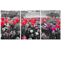 "Flower Picture Canvas Painting Photography Artwork Canvas Printing Modern Home Wall Decoration (16""x24""x3)"