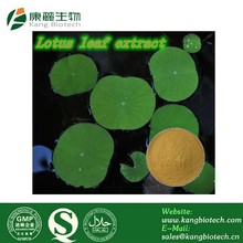 slimming powder natural extracts lotus leaf extract